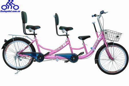 Mẹo mua xe đạp đôi giá rẻ nhưng chất lượng rất tốt