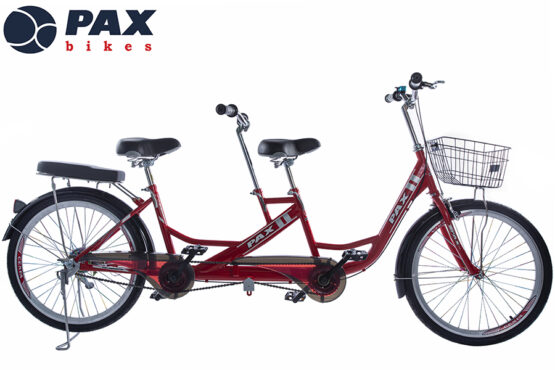 xe-dap-doi-pax-6r
