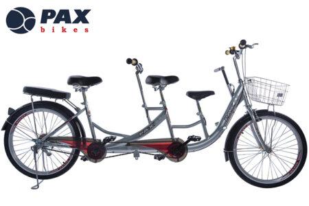 xe đạp đôi trẻ em